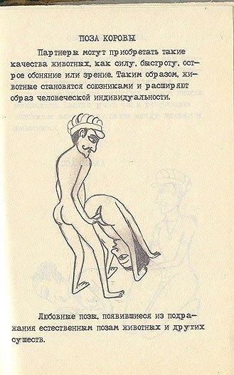 Смотреть камасутра анатомия секса