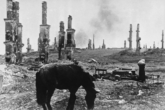 Восемь загадочных фактов о Сталинградской битве